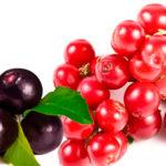 Acai berry y Camu - Camu